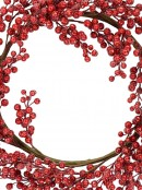 Decorative Lightly Frosted Red Berry Bare Vine Wreath - 63cm