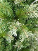 Rocky Mountain Fir Traditional Christmas Tree With 1700 Tips - 2.3m