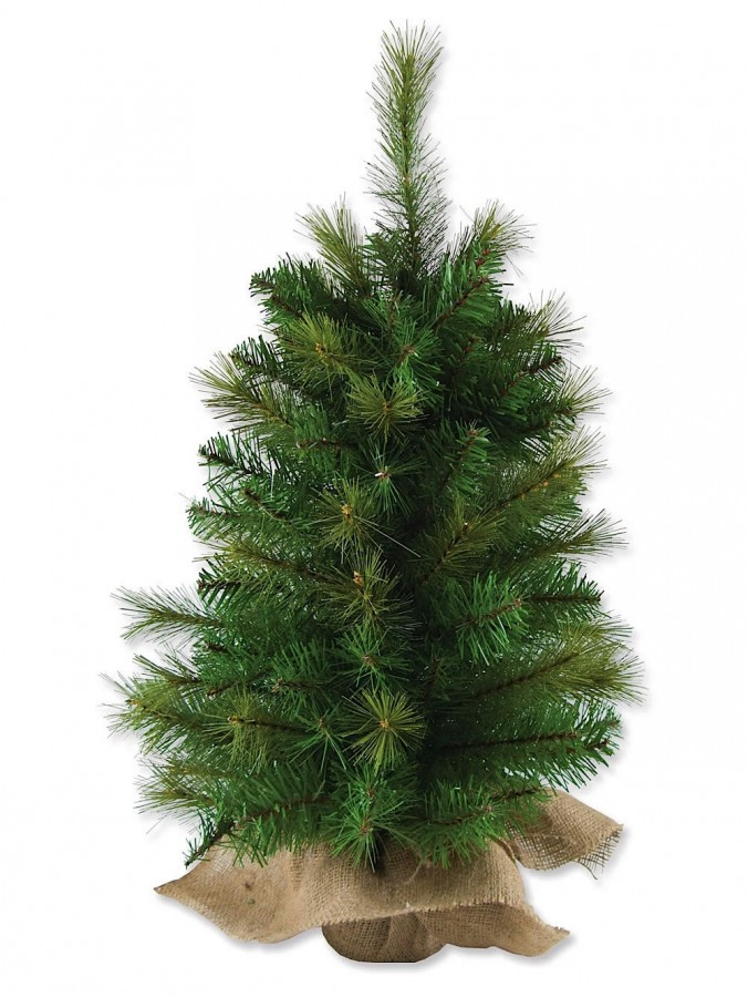 White Christmas Trees For Sale Australia