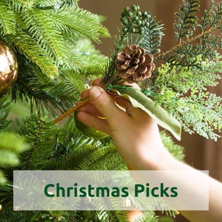 Shop Christmas Picks