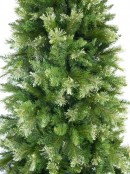 Rocky Mountain Fir Traditional Christmas Tree With 1077 Tips - 1.8m