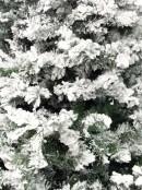 Antarctic Pine Heavily Flocked White Snow Christmas Tree 1495 Tips - 2.3m