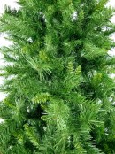 Eastern Pine Christmas Tree - 3m