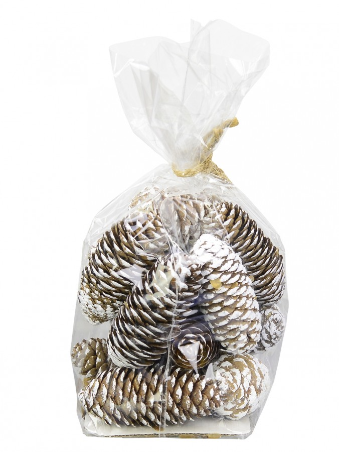 Bag Of Decorative Long Natural & Frosted White Pine Cones - 100g