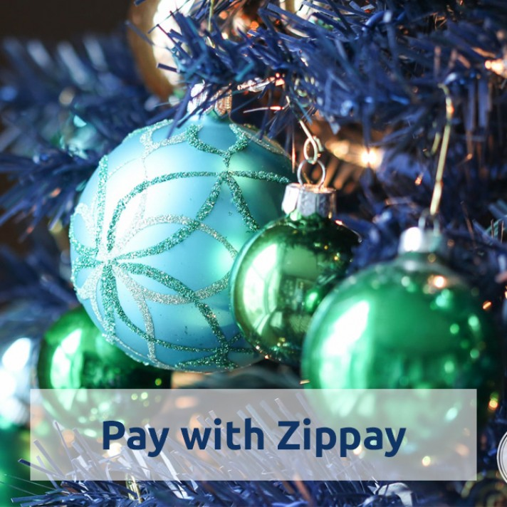 Pay With Zippay at Christmas Shop